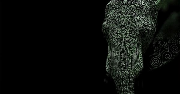 elephants-06