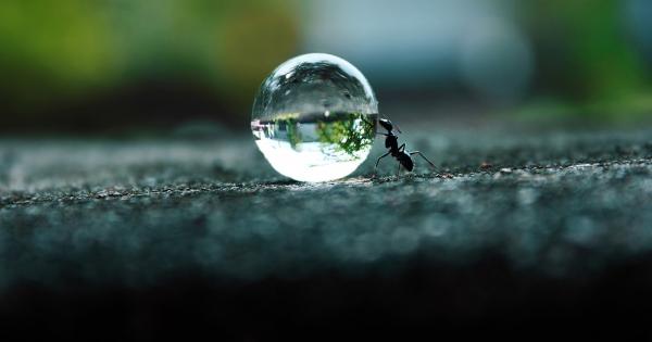 magic-crystal-ball_hd_12