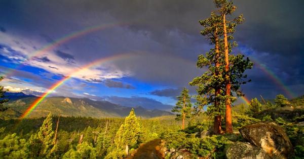 rainbow-04