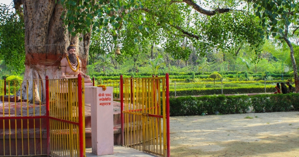 banaras-hindu_universty_hd17
