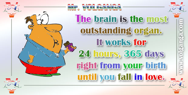 The brain is the most outstanding organ.  It works for  24 hours, 365 days right from your birth until you fall in love.