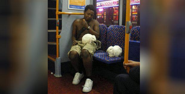 Weird bus passenger