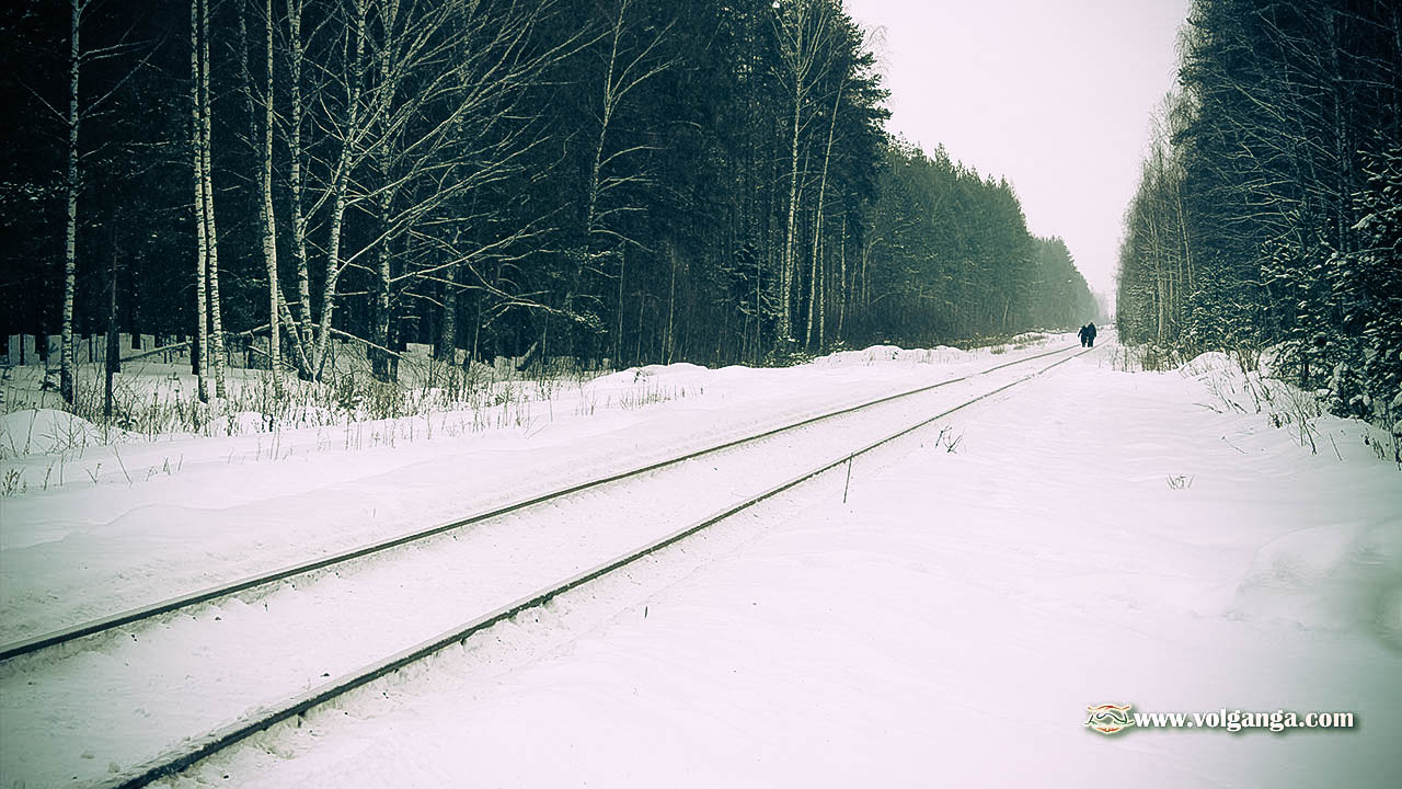 railways in the winter forest