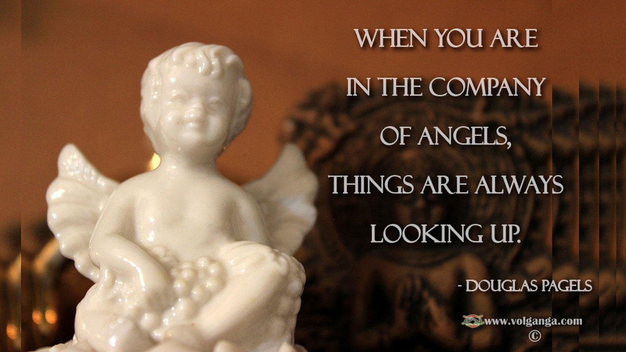 In the company of angels everything is looking up