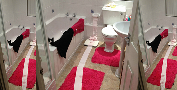 Who's unwound the toilet paper while I was taking bath?!