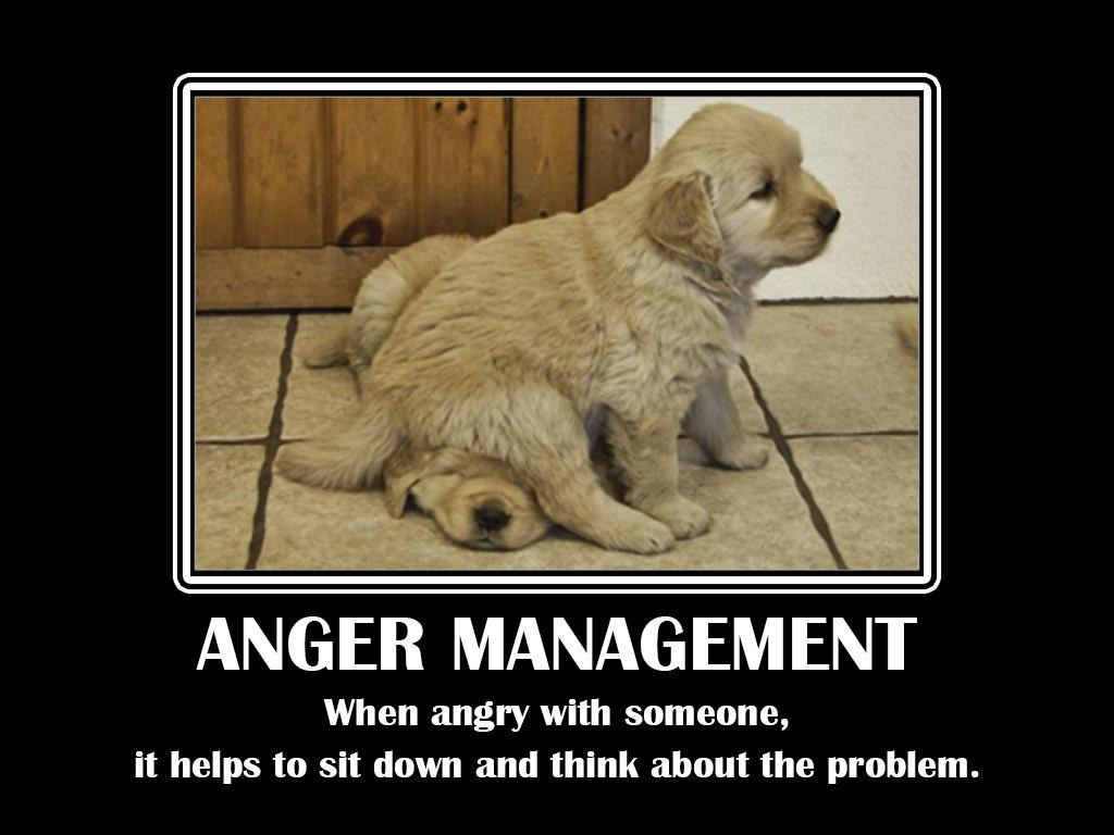 When angry with someone, it helps to sit down and think about the problem.