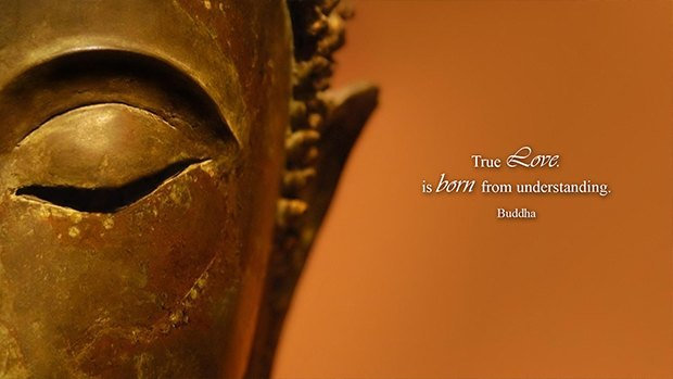 True love is born from understanding. (Buddha)