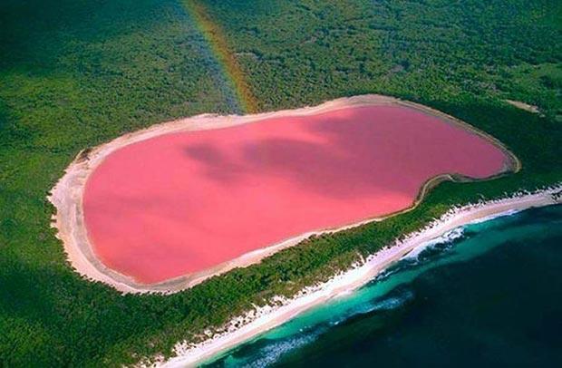 Stunning bird  view on pink lake of Koyashskoe