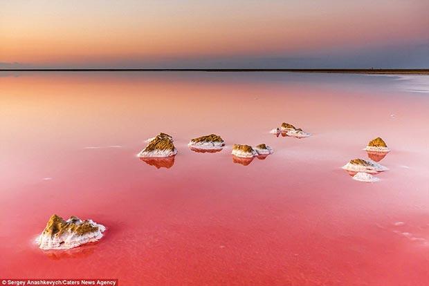 Koyashskoe Salt lake in Crimea. Magnificent pink lake view