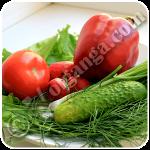 Summer salad ingrediets