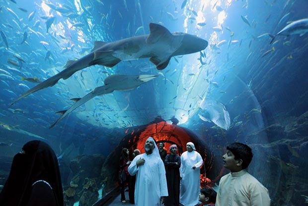 Dubai Mall, Dubai, United Arab Emirates