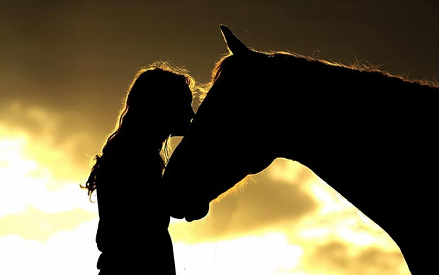 She kisses horse