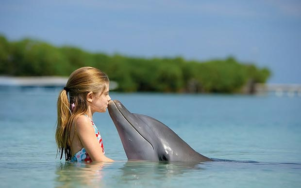 Girl kisses dolphin