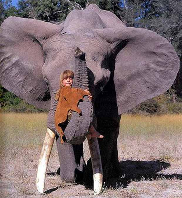 Tippi Degré and the elephant Abu