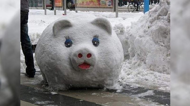 Positive snowman pig