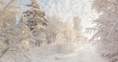 Beautiful Russian winter HD wallpapers
