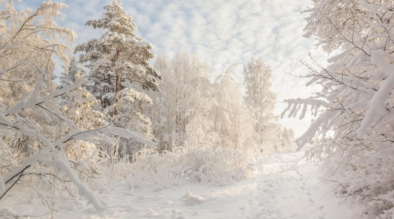 Beautiful Russian winter HD wallpapers