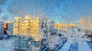 Frost ornament on window