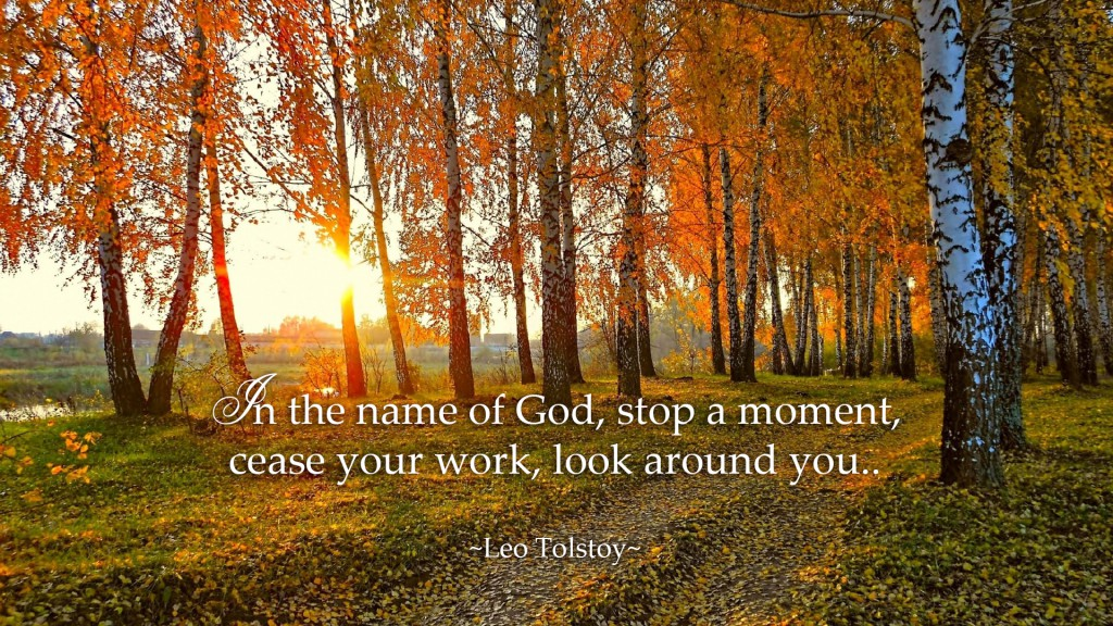 In the name of God, stop a moment, cease your work, look around you. ~Leo Tolstoy~