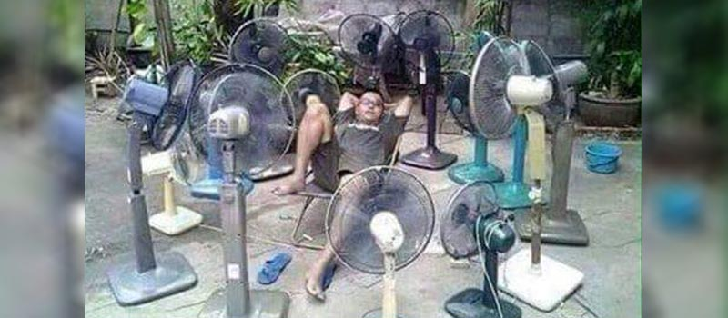Inventive ways to survive in summer heat. #6