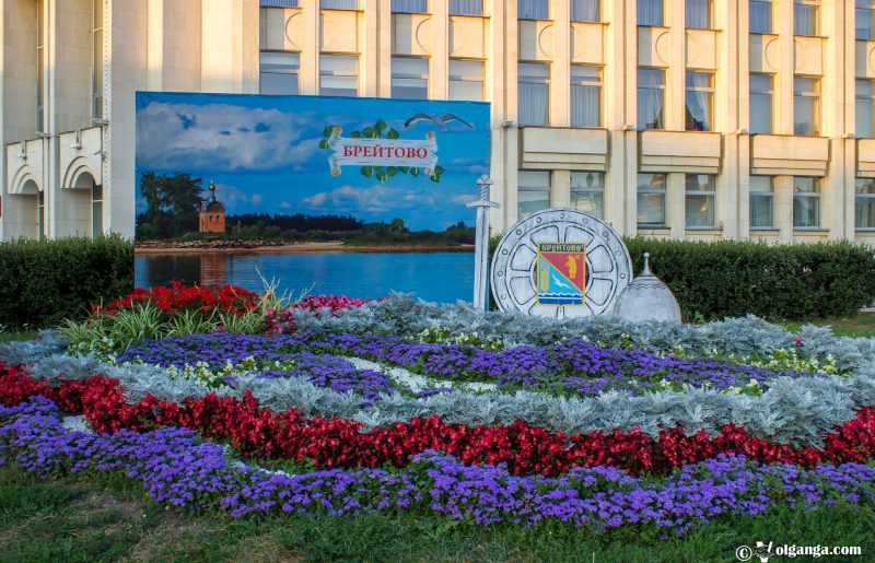 Flowerbed by Breitovo village, Yaroslavl, 2016