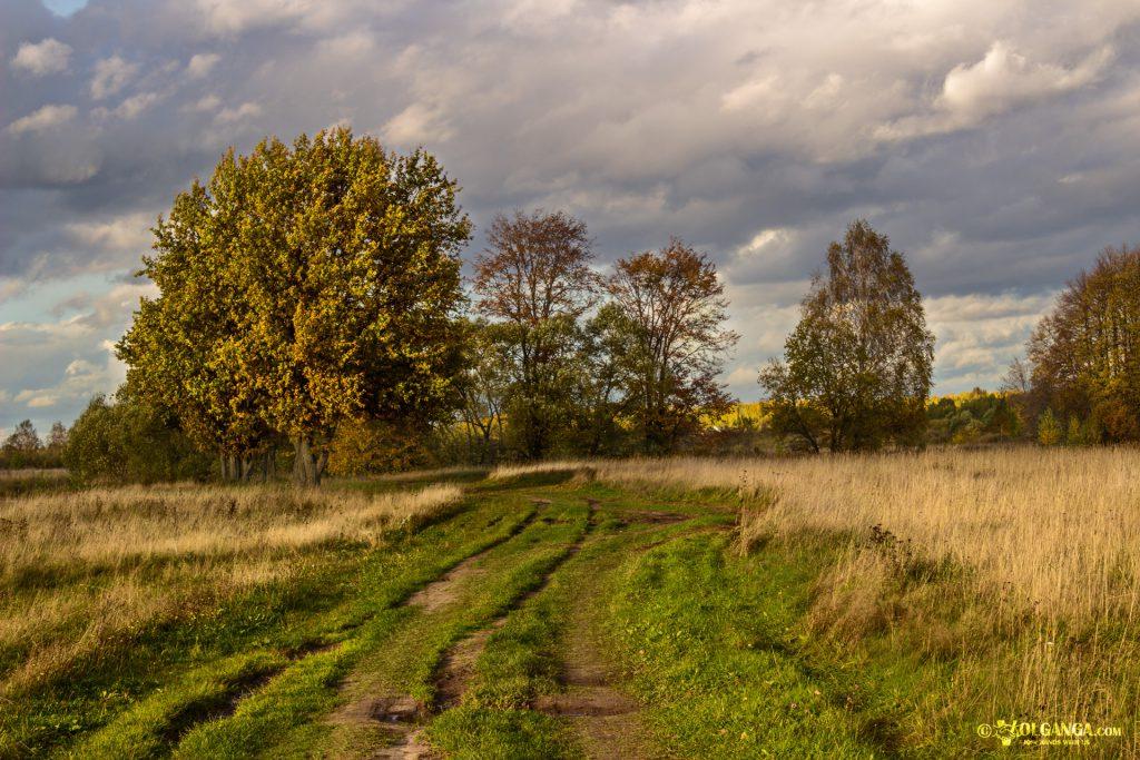 Along the river Volga. Autumn in Russia 2016