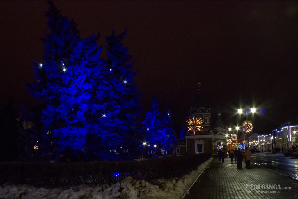 Rare blue pines are illuminated with blue light