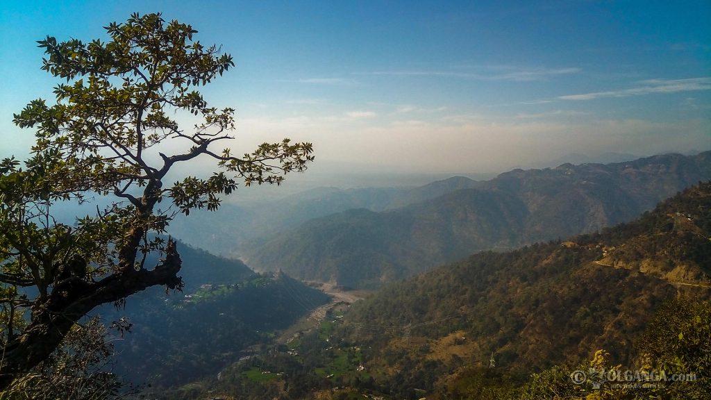 Beautiful nature of Uttarakhand (India)
