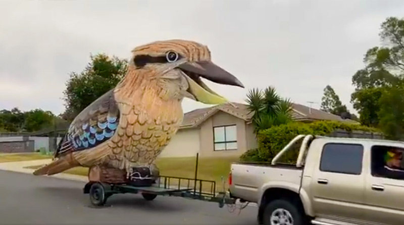 Australia-based sculptor builds a giant laughing bird during the lockdown