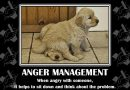 Funny and witty anger quotes